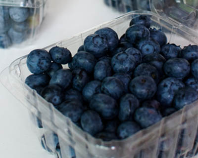 how to know if blueberries are rotten