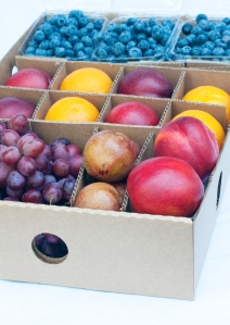 Summer Fruit in Season | Organic Fruit Delivery - Organic Fruit Gifts | FruitShare.com