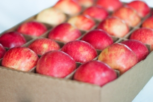 Honeycrisp Apples - Organic Fruit Delivery from FruitShare.com