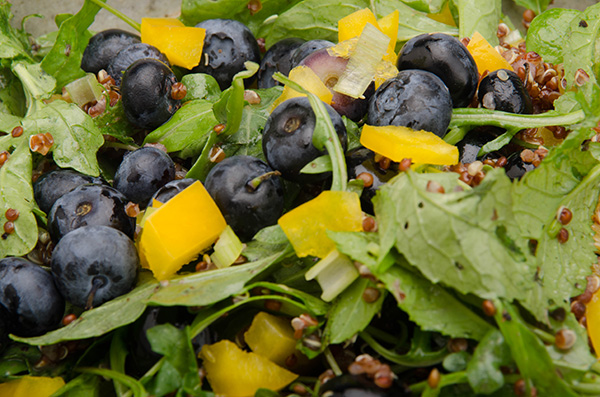 Organic Blueberry Summer Salad